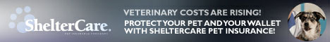shelter care